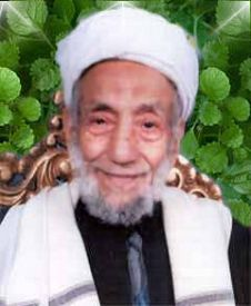 Mohammad bin Mohammad Al-Mansour | Pic 1